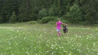 Potulky lesom s Viktorkou.mp4 snapshot 00.18.000