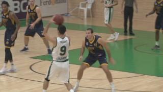basket ha 03 11